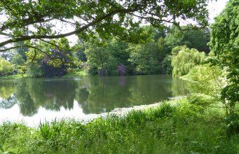 Der englische Landschaftsgarten als Spiegel der Natur