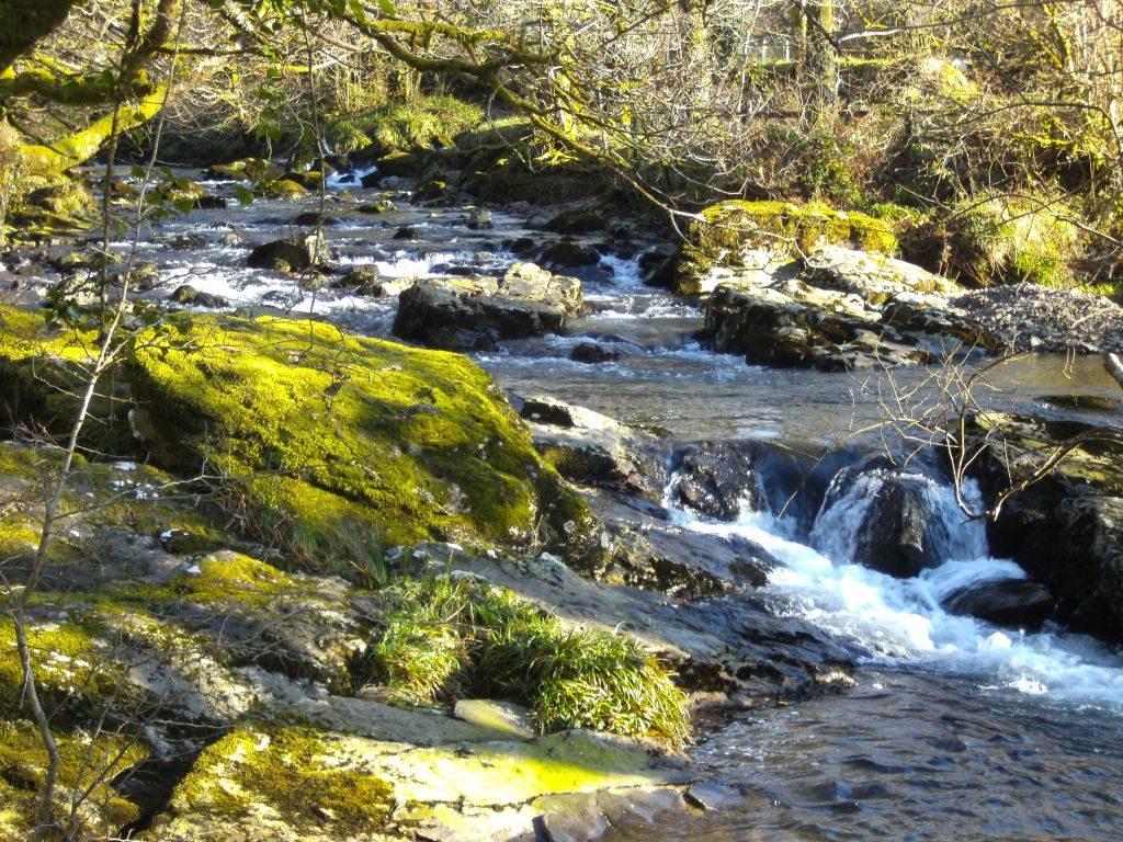 Dartmoor Flüsse