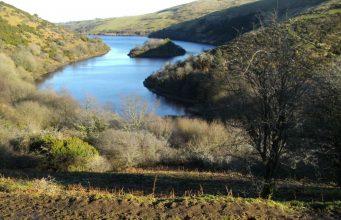 Ausblicke im Dartmoor