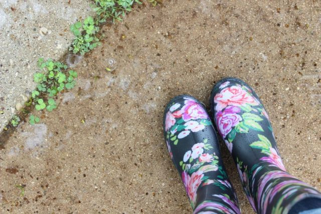 Wellingtons in modischen Farben