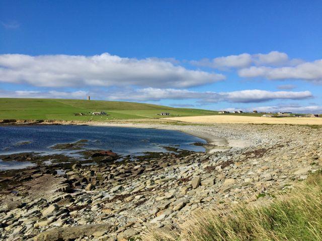 Meer, Bucht, Wiese, Orkney