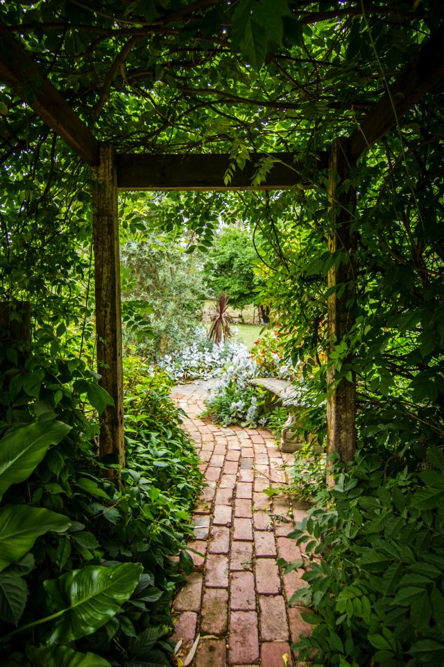 Garteneingang, Pflanzen