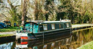 Boot im Wasser mit Bäumen